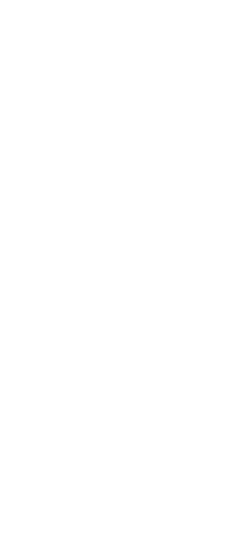 郡上八幡 町屋敷 越前屋 Gifu Gujohachiman ECHIZENYA